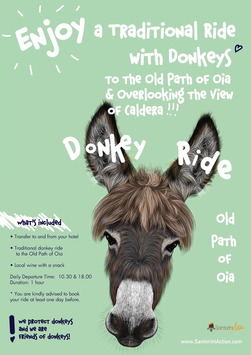 donkeys-poster-1